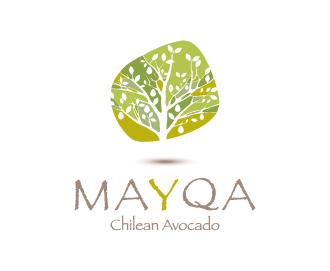 logo_mayqa-fondoblanco